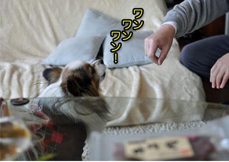 21日ブログ13.jpg