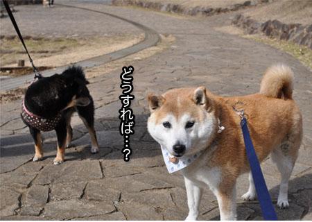 13日ブログ12.jpg