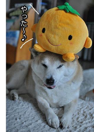 15日ブログ8.jpg