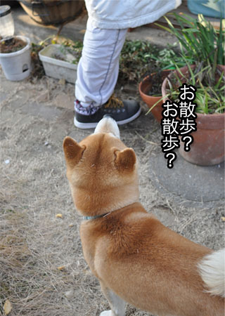 18日ブログ2.jpg