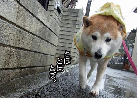 24日ブログ4.jpg
