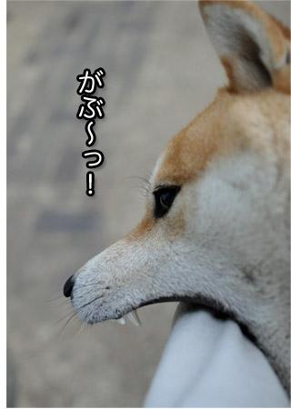 26日ブログ10.jpg